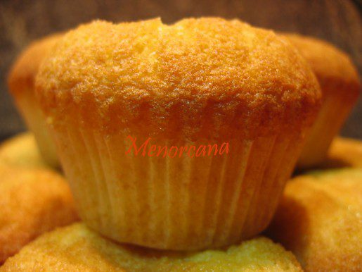 magdalenas-de-pina-005-copia-515x386