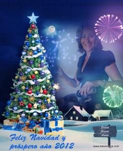 Que esta época de Navidad esté llena de felicidad en todo lo quehagáis ypodáisseguir disfrutando de esta alegría a lo largo de todo el año 2012.